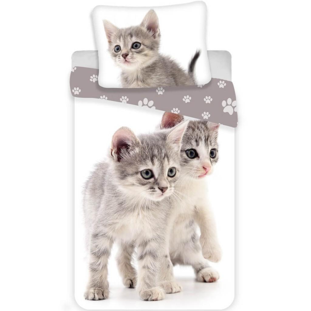 Povlečení fototisk Kitten grey